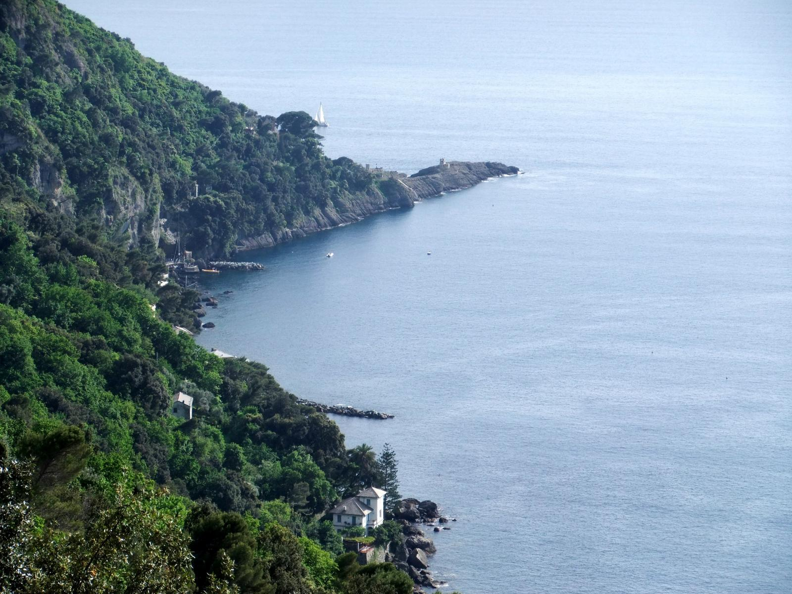 Punta Chiappa dal sentiero