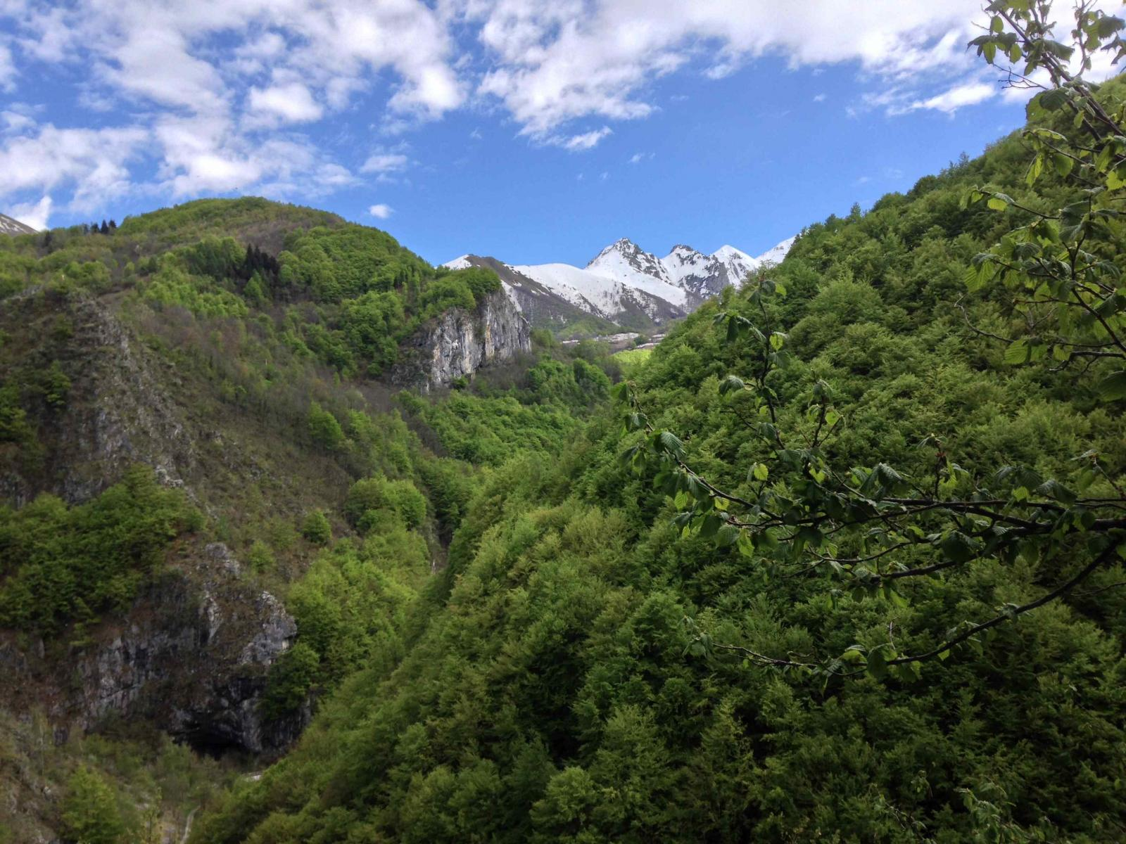 Primavera lussureggiante nel vallone di Palanfré