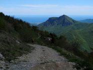 Sulla sterrata verso Madonna del Lago, sullo sfondo Monte Castell'Ermo e il mare