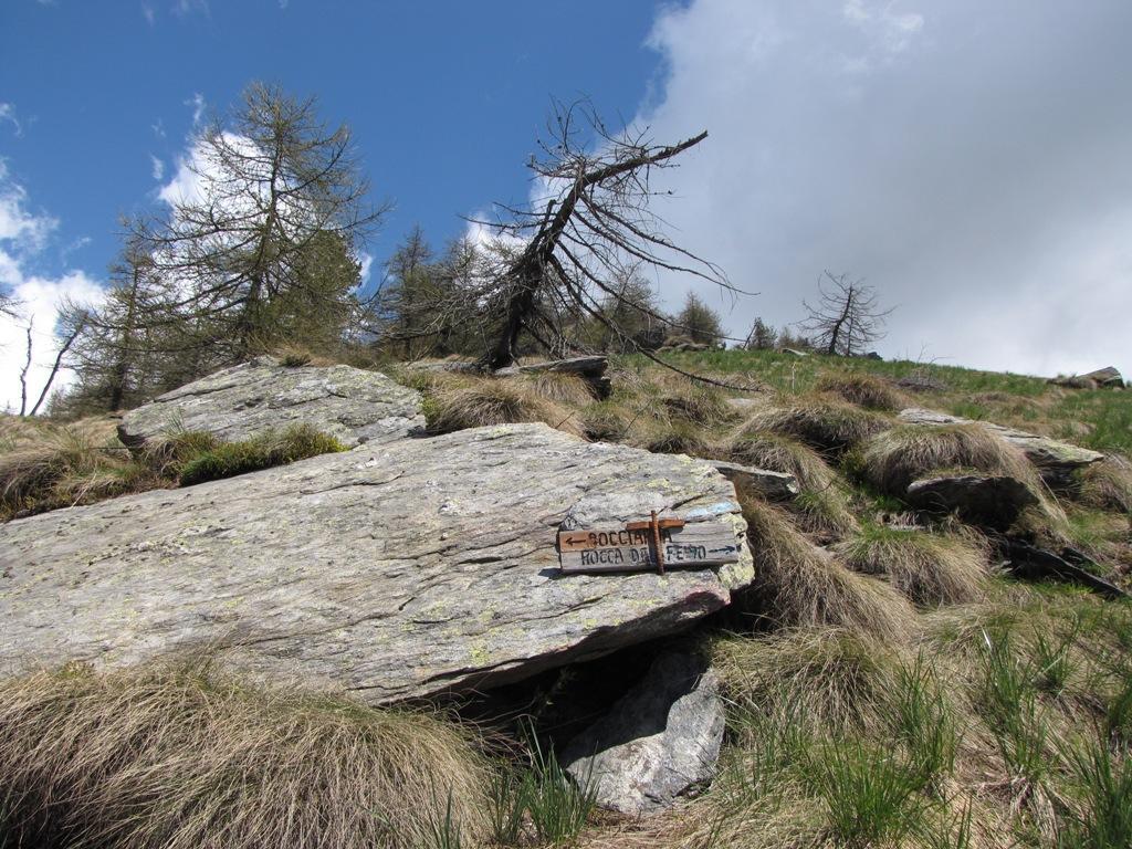 il bivio bocciarda-rocca del pelvo
