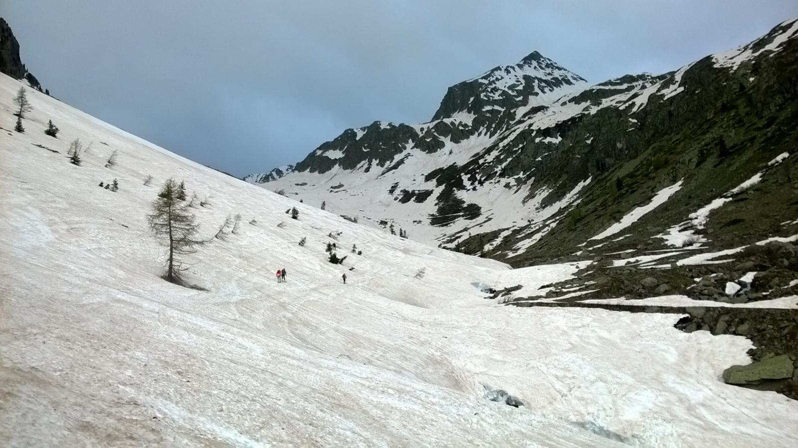 Neve da subito