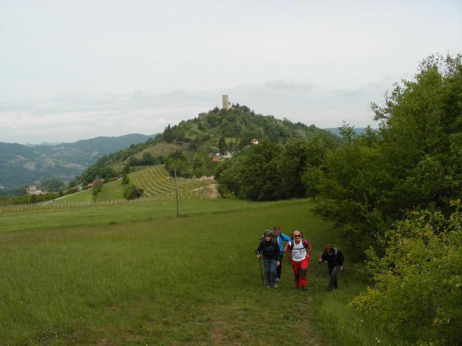 Roccaverano (Torre di) da Monastero Bormida, anello delle 5 torri 2014-05-11
