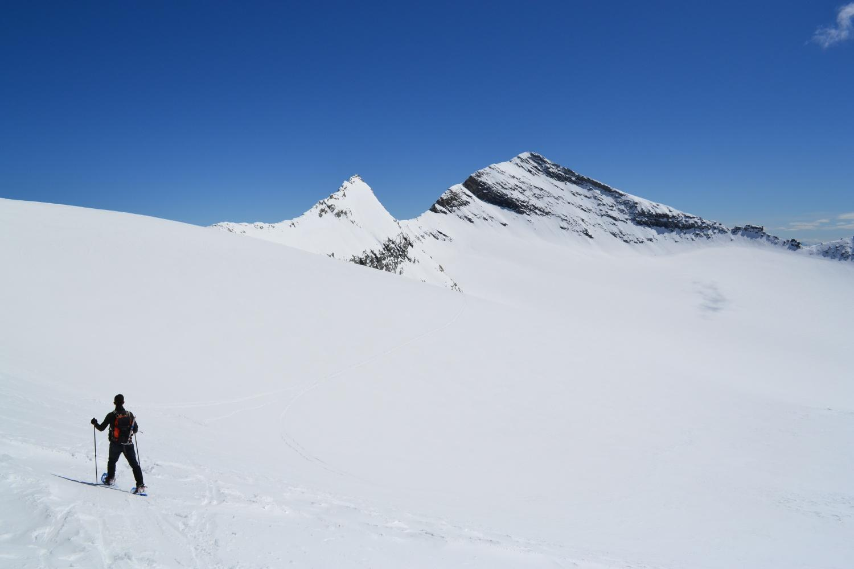 sul ghiacciaio in direzione del Leone