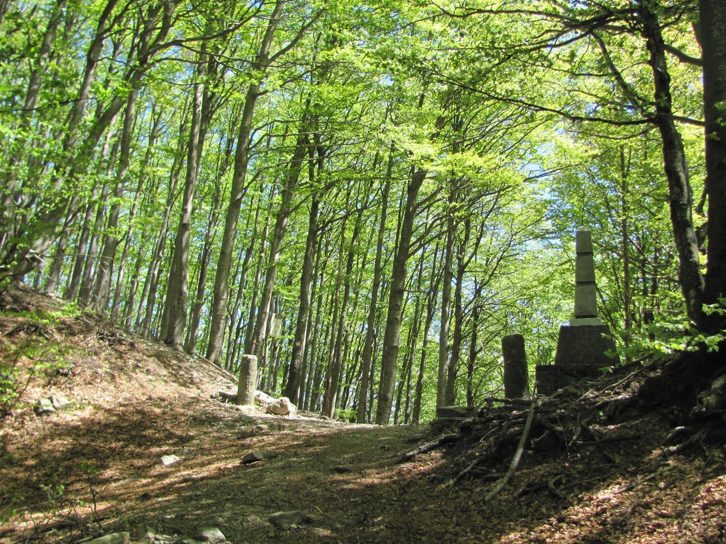 Gottero (Monte) dal Passo della Cappelletta 2014-05-18