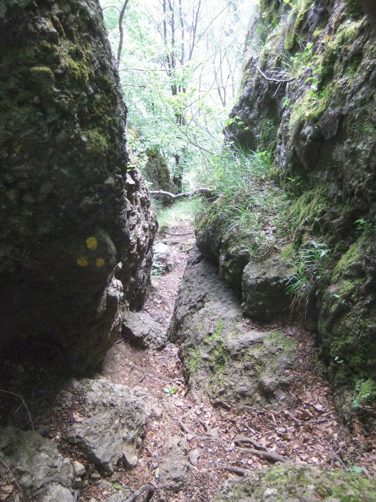 Il canalino di accesso al Gifarco