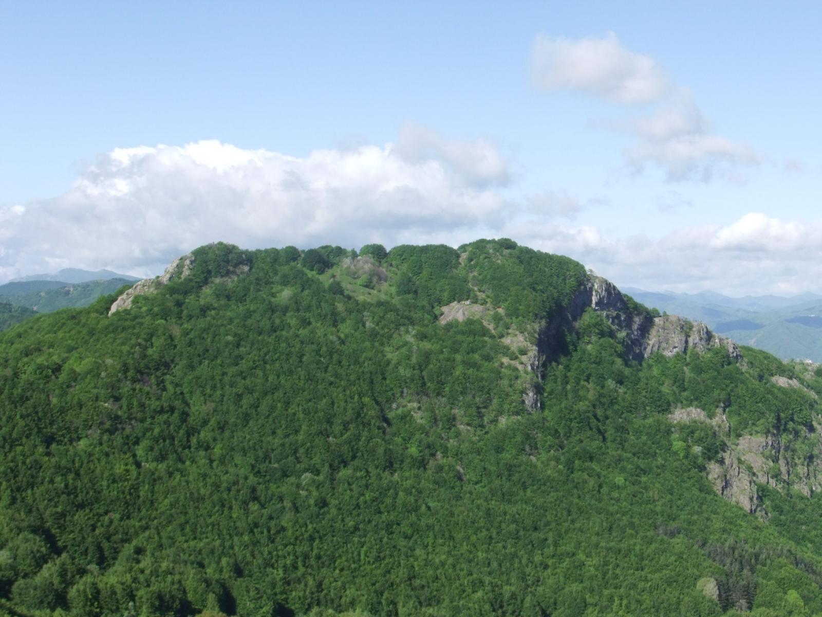 Castello del Fante dal Gifarco