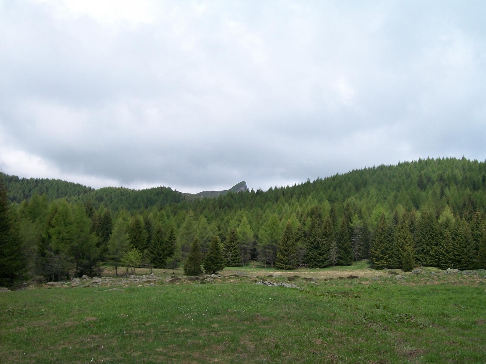 Dalla mulattiera verso l'Ortiga vista sulla Rocca Radevil