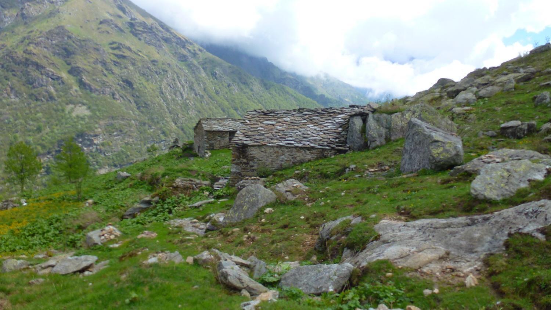 all'Alpe Pasquà