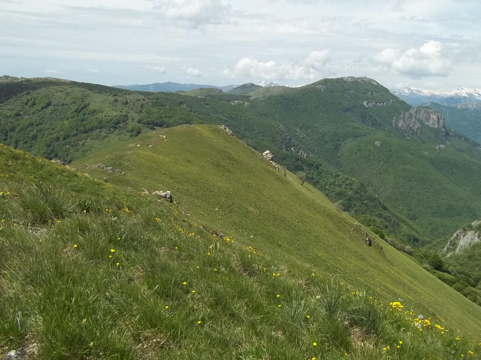 Galero (Monte) e Monte Dubasso dal Colle San Bernardo per il Monte Armetta 2014-05-25