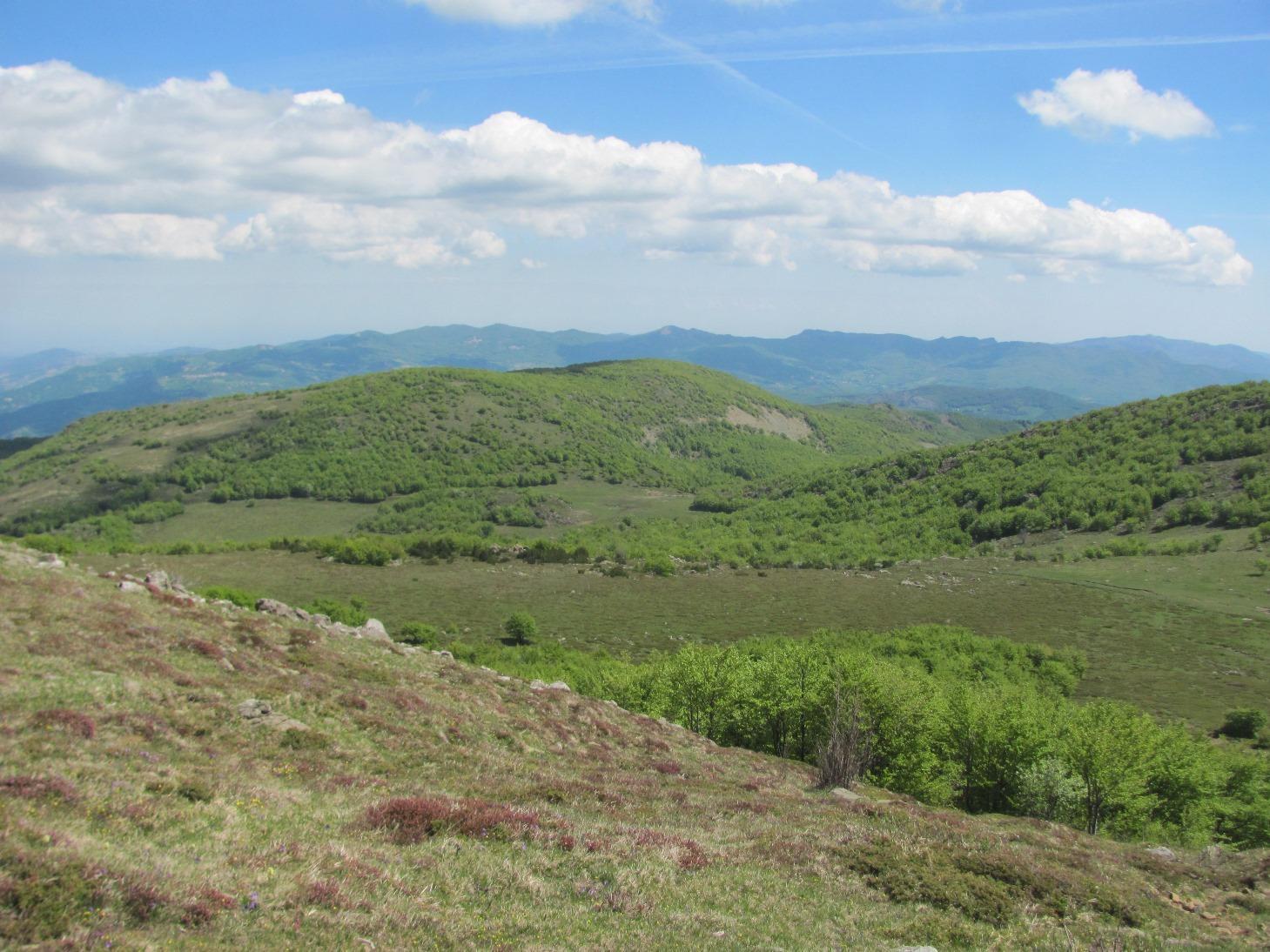 I vasti prati risalendo il versante nord del Monte Ragola