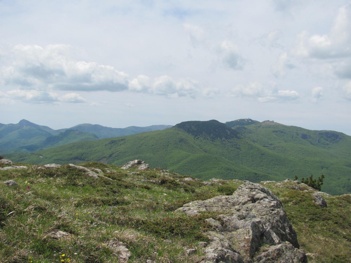 Vista dal Monte Ragola verso i monti Penna, Aiona, Nero, Maggiorasca e Bue