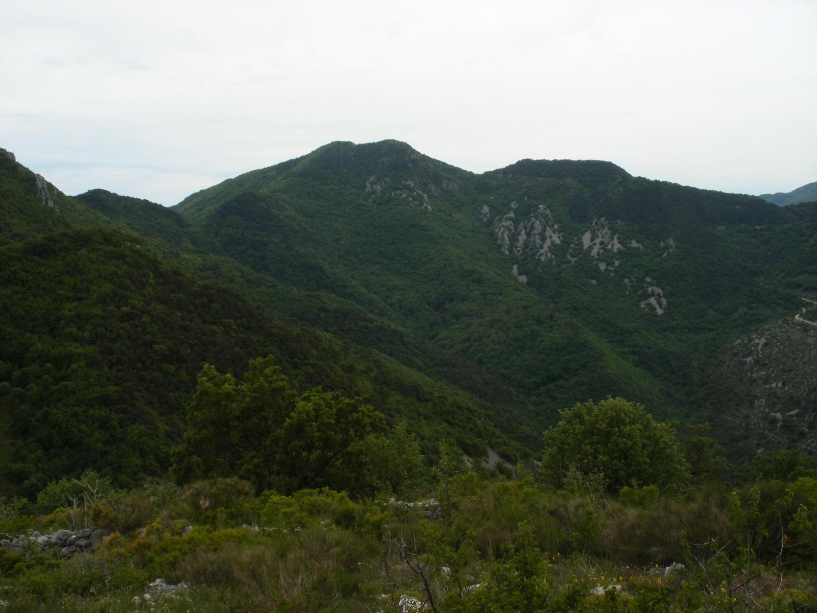 Razet (Mont)da Sospel, anello Col du Razet, Baisse de Scuvion, Col de Roulabre e ka Cuore 2014-05-25
