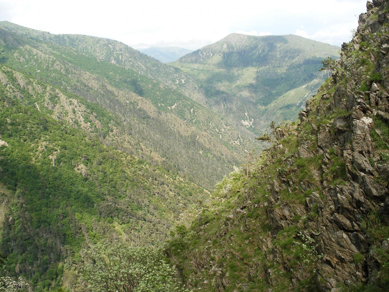 il lungo percorso a sali e scendi verso Arenzano