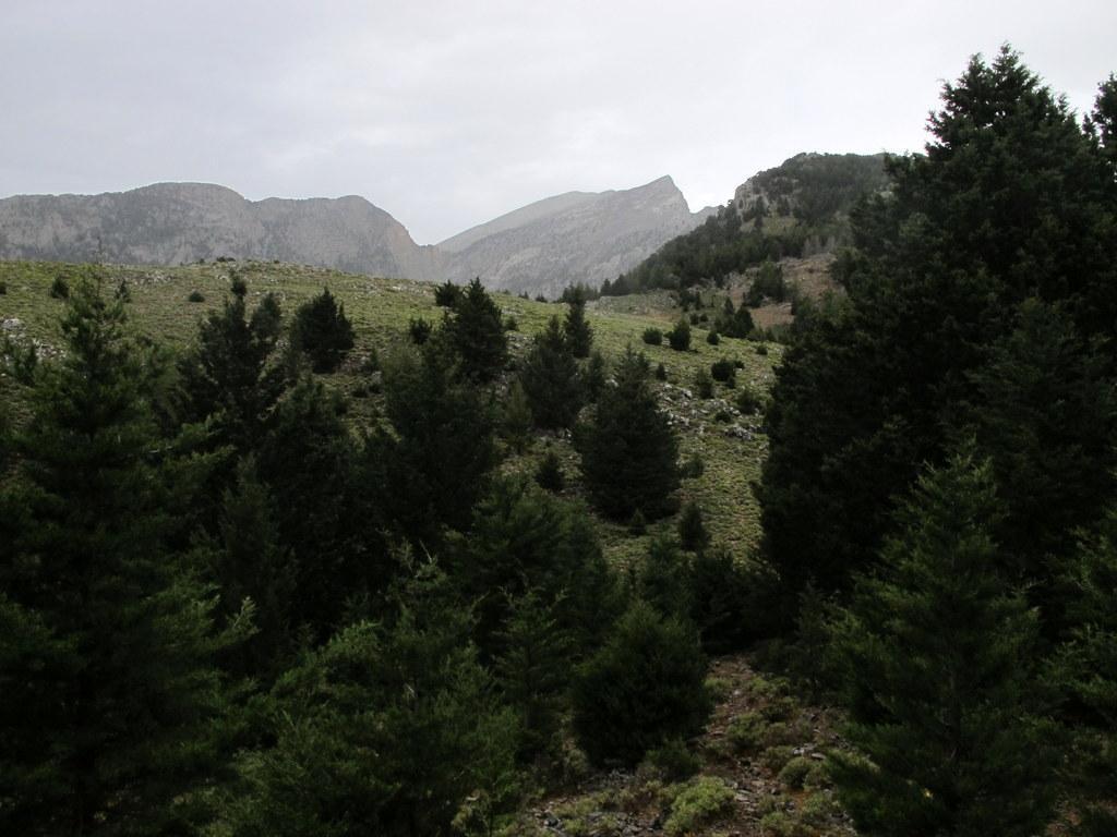 Uno sguardo indietro (al centro la cresta che scende dal Volakias)