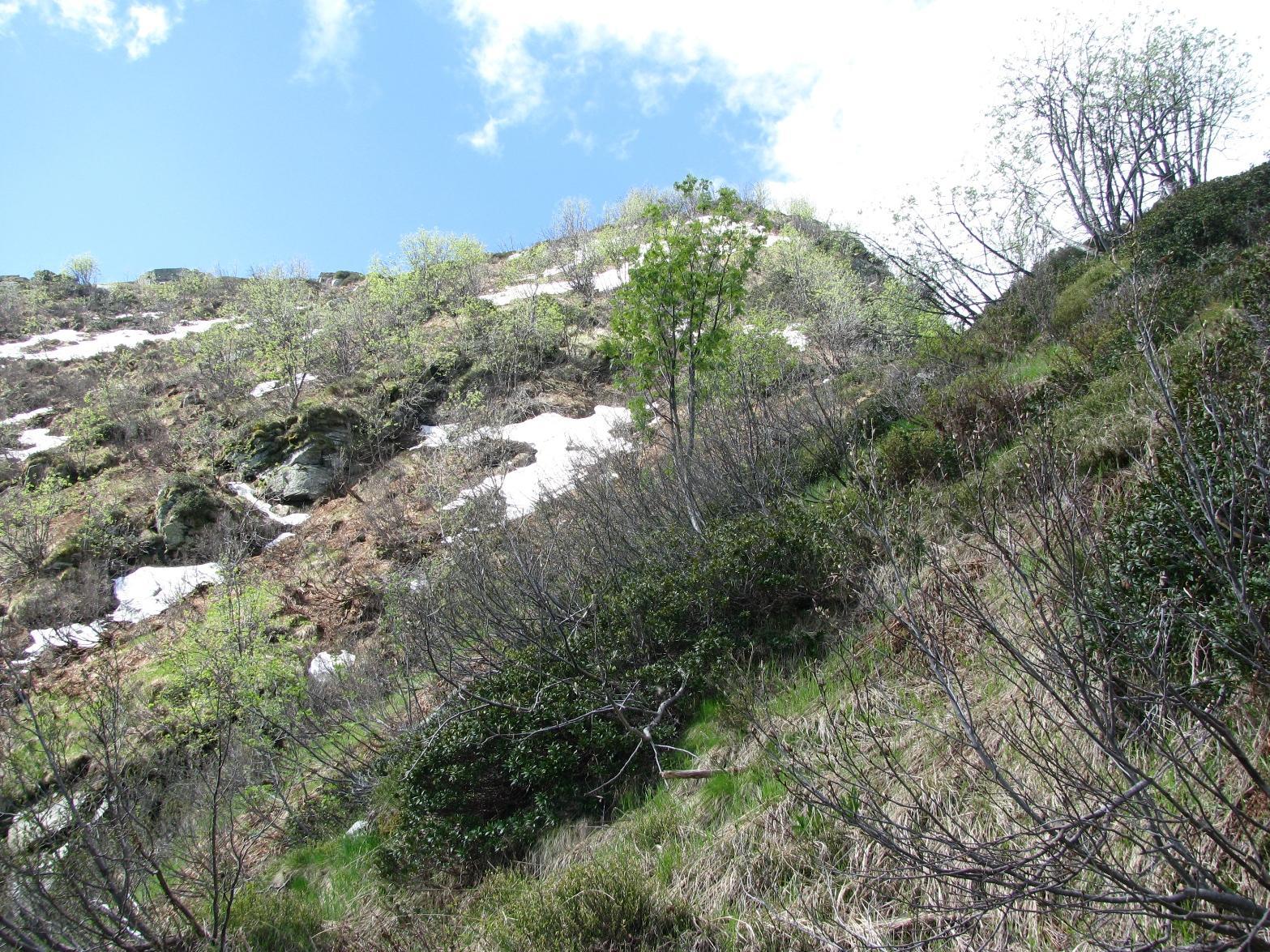 Parte alta della cresta di salita