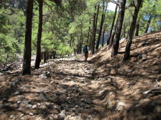 Scendendo a valle di Fliskounias