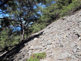 Verso la cresta di separazione con la Gola di Elighia