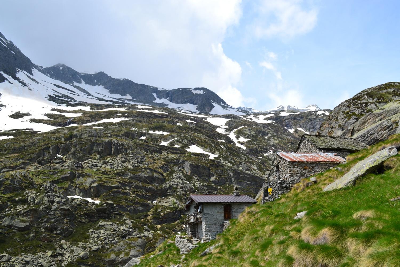 Alpe Predenon (1831 m)
