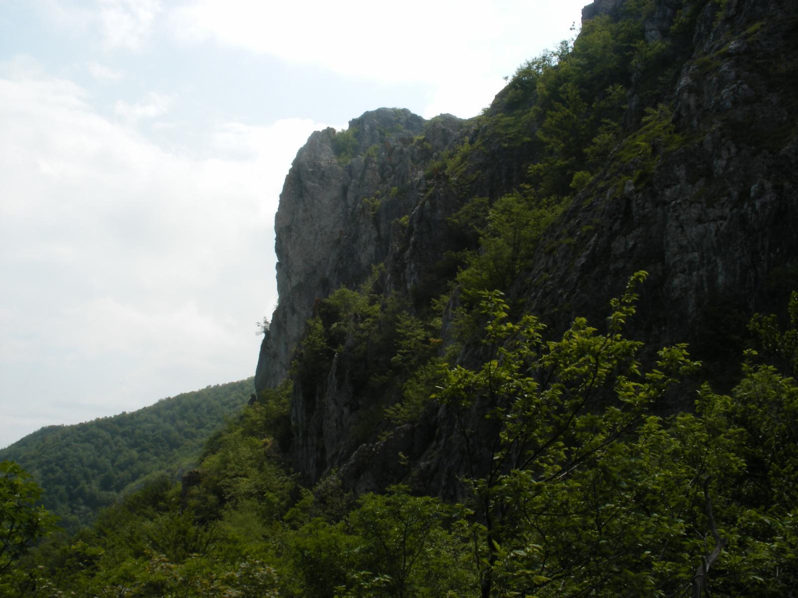 Barbena (Rocca) da Cisano sul Neva, traversata a Zuccarello per Poggio Ceresa e Poggio Grande 2014-06-02