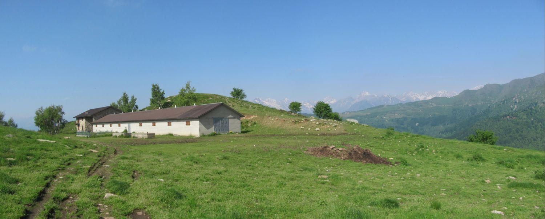 panorama dall'Alpe Cialma
