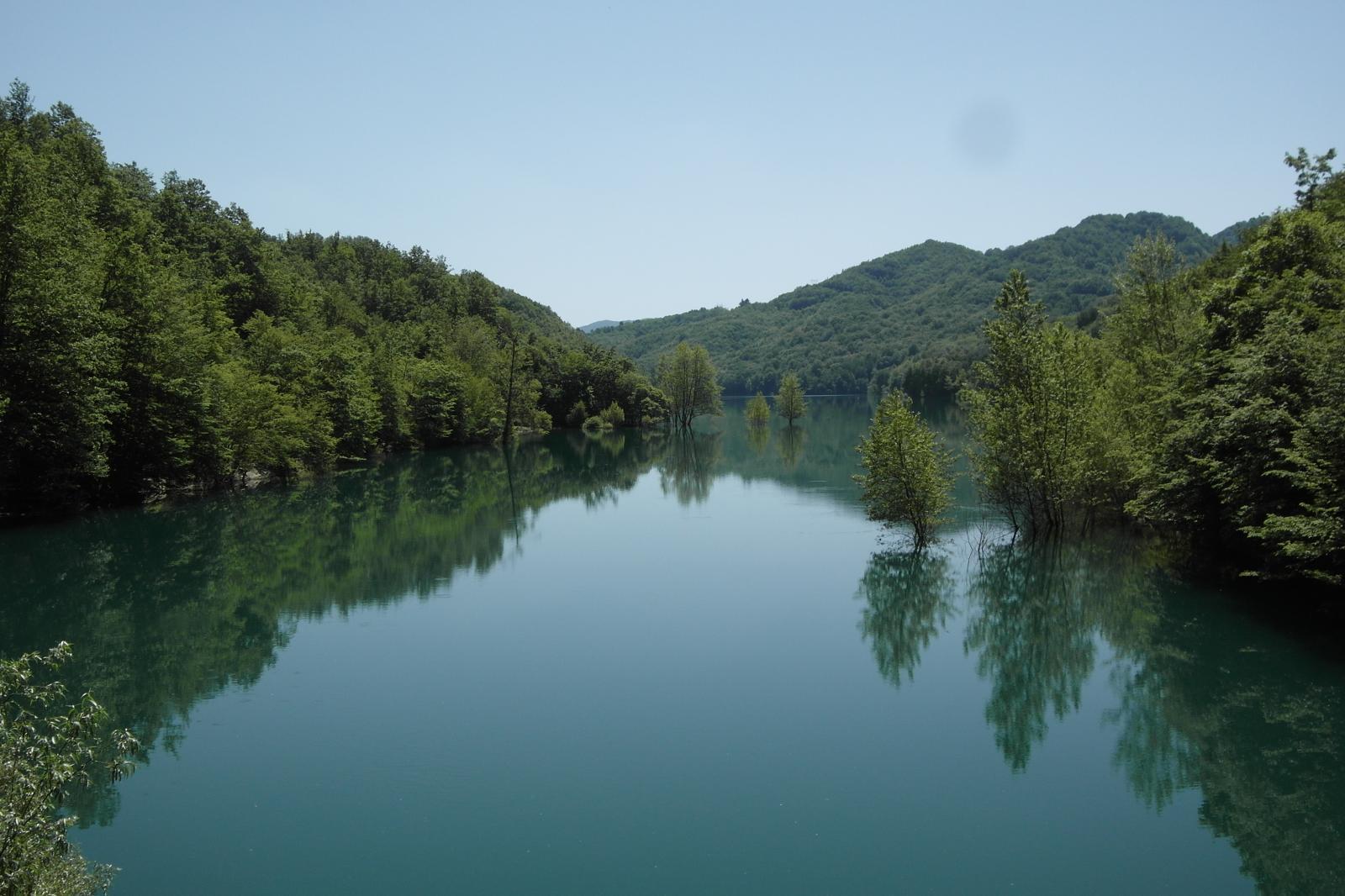 Antola (Monte) da Genova, Rigantoca trail 2014-06-08