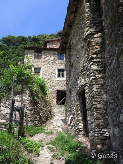 San Bernardo (Colle) da Cerisola, anello per la Via del sale Cerisola 2014-06-13
