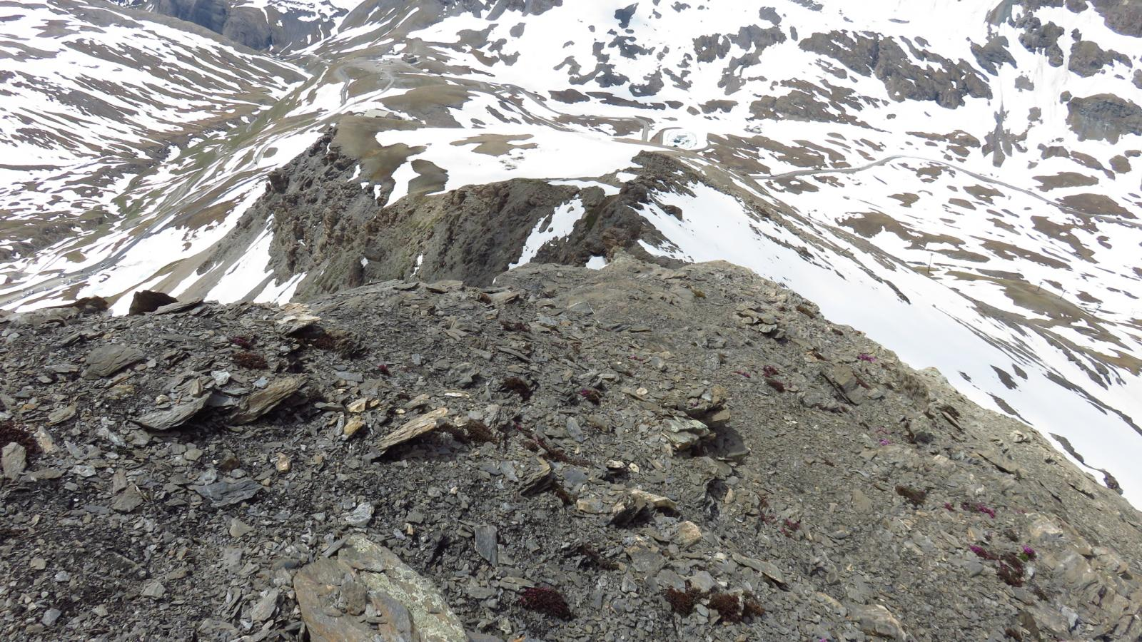 la cresta SO fin qui percorsa vista da quota 3120 m.