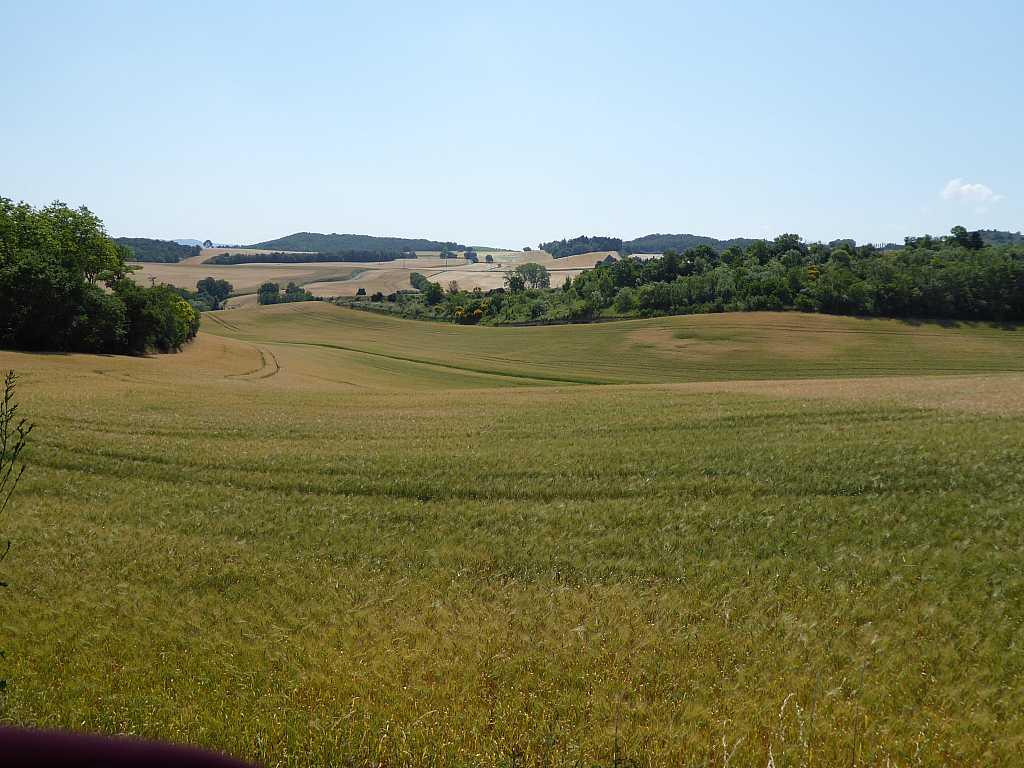 Tourmalet (Col du) da Argelest 2014-06-15