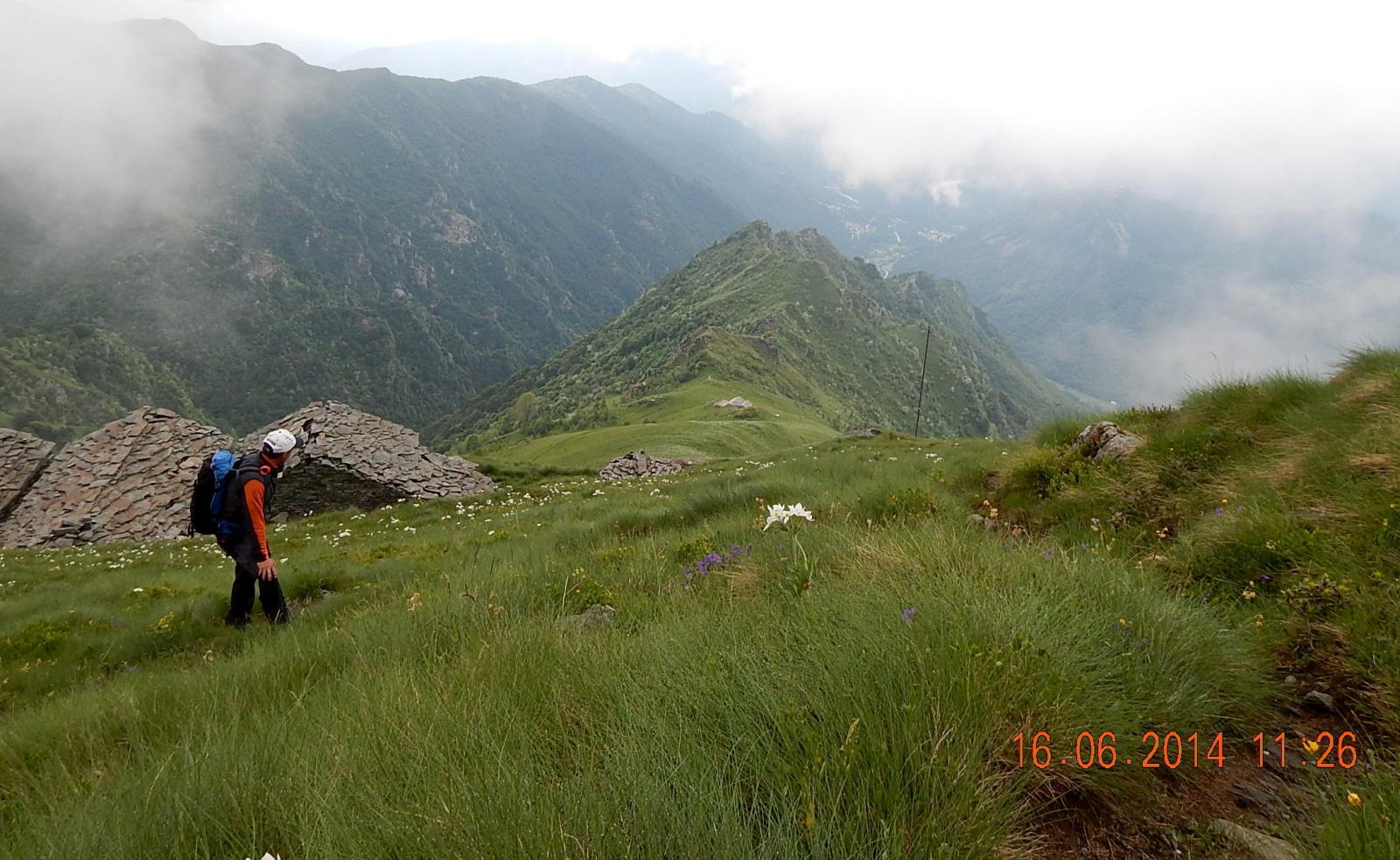 Uno sguardo a valle