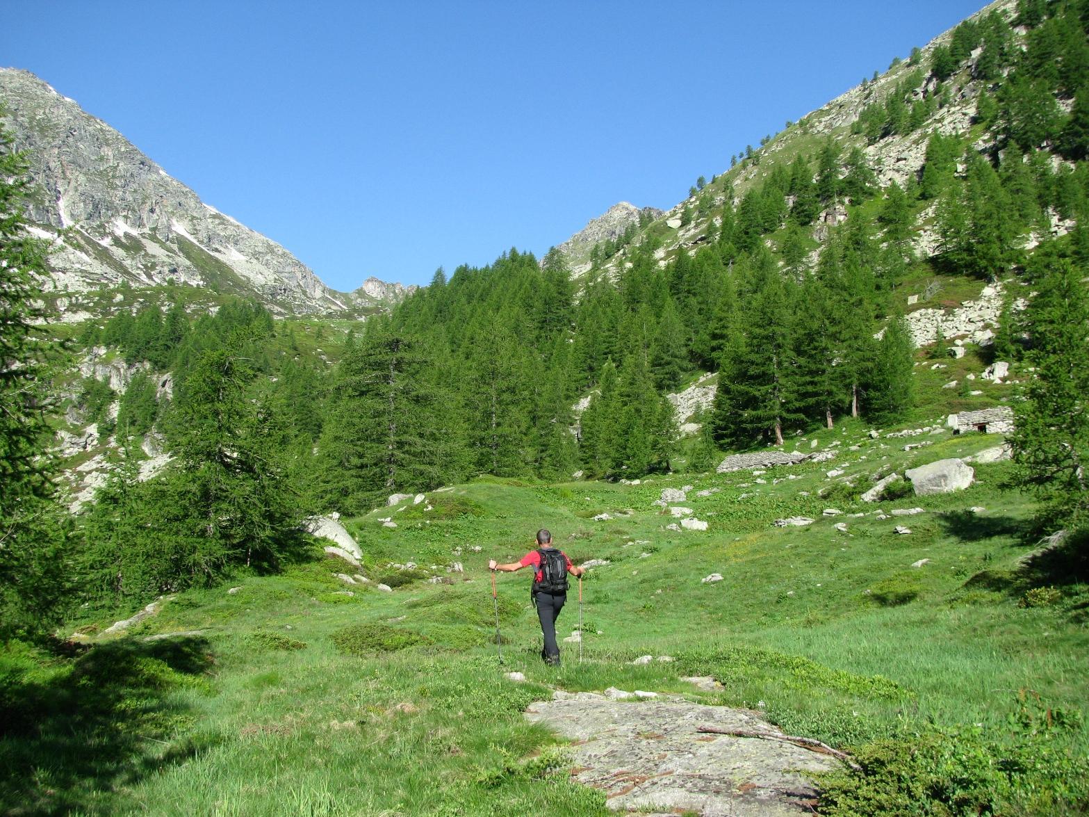 Arrivo all'Alpe Loserai