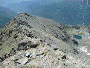 Cresta della Sud verso lago Jouglard, bella da scendere ma anche da salire senza toccare neve !!!