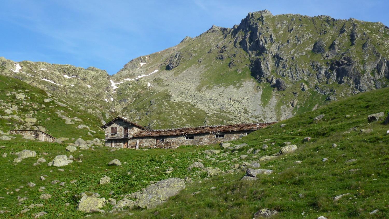 all'Alpe Gran Fumà