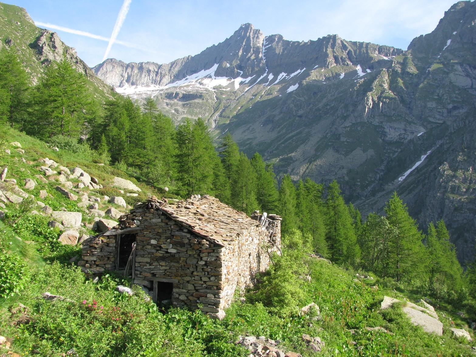 Alpe Vellerei e Torre Lavina