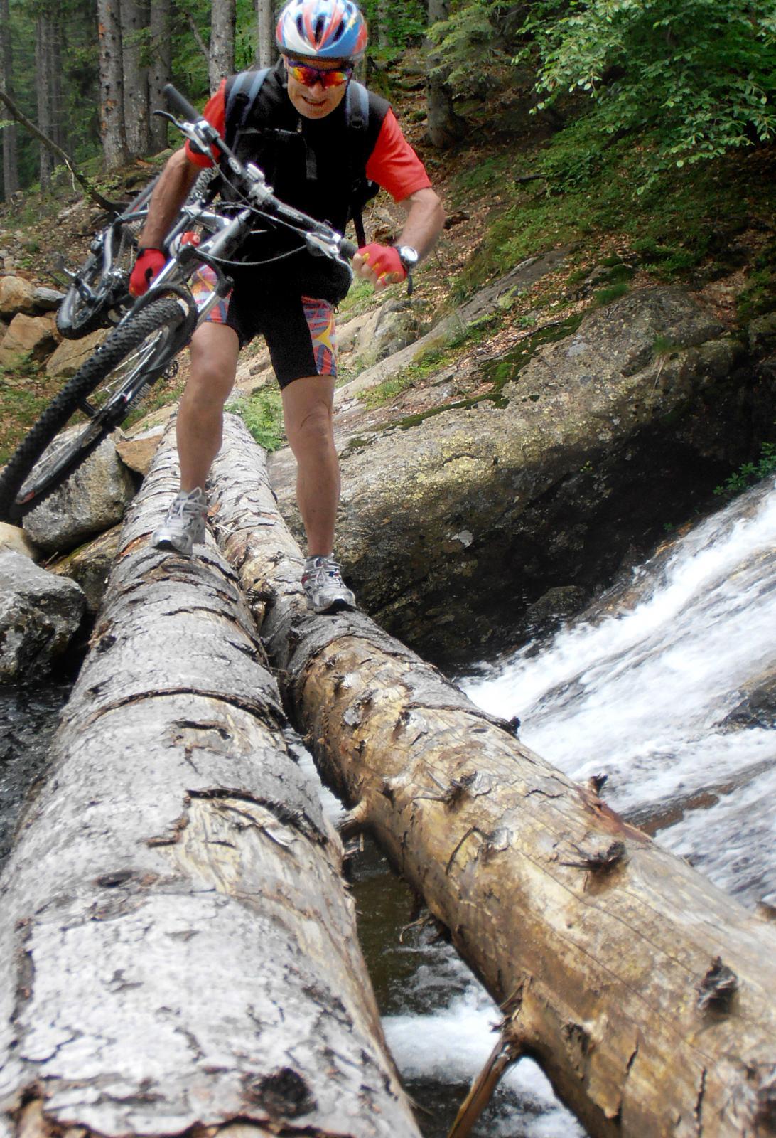 ponte di tronchi