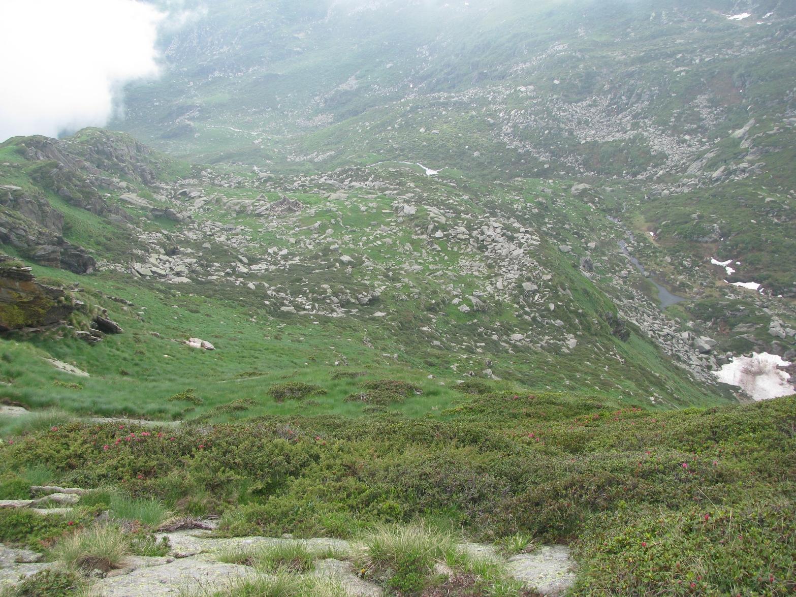 Pendio di discesa all'Alpe Palit