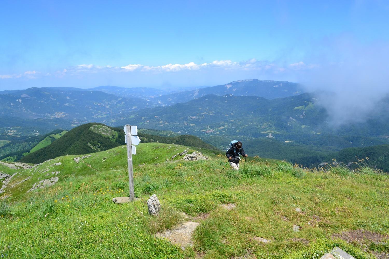 panorama dalla cima dell'Orsaro