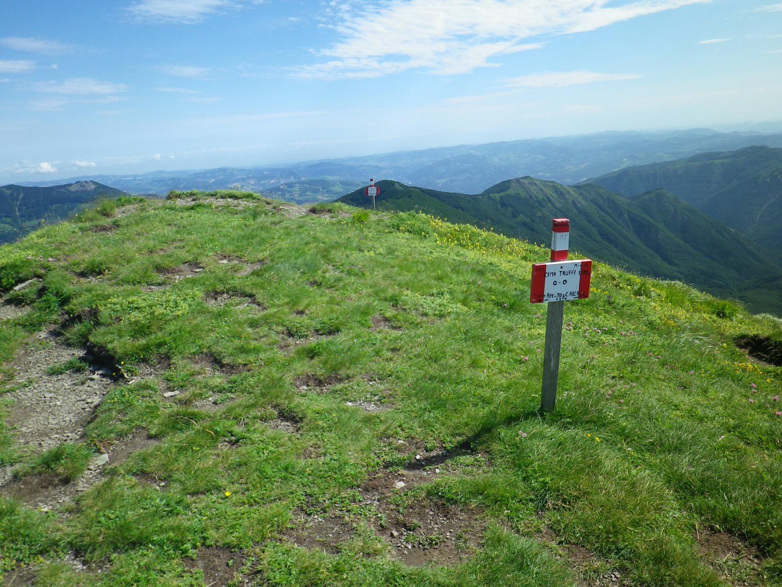la vetta erbosa della cima Tauffi