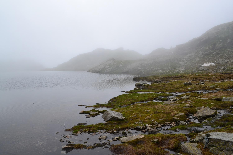 Laghetto della Furce nella nebbia