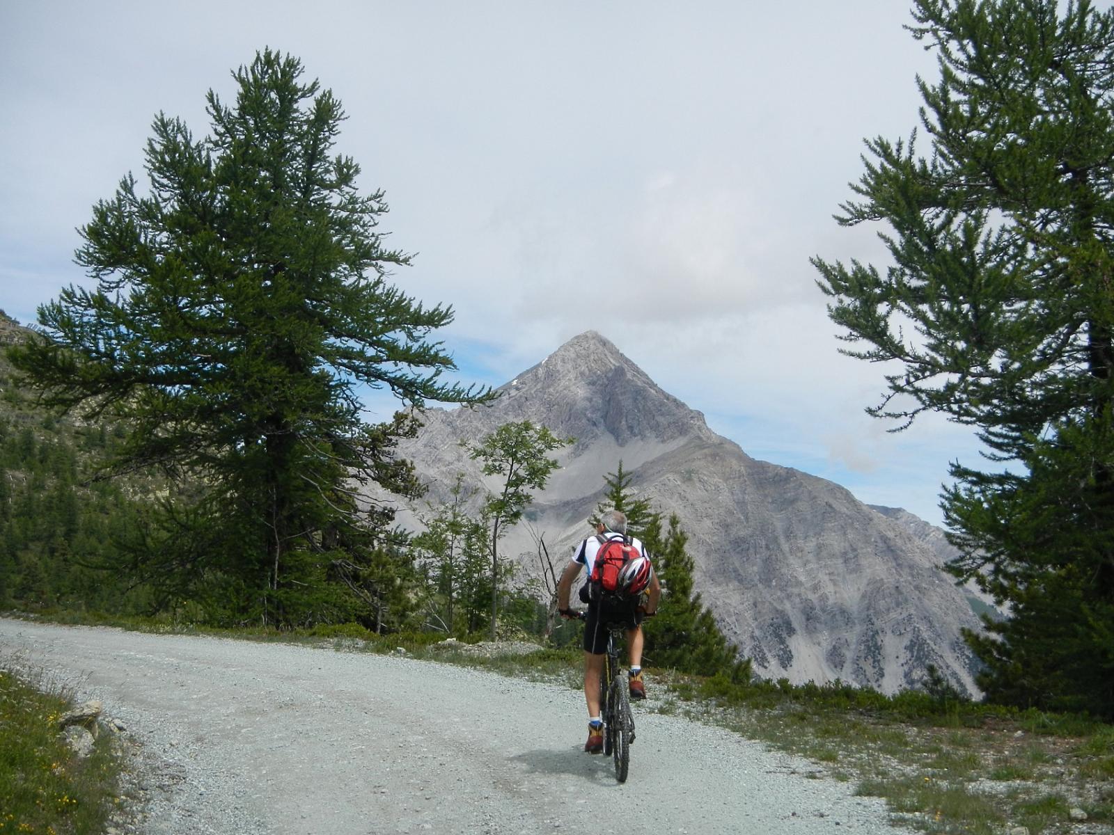 salendo al Colle Bercia; vista sul Monte Chaberton