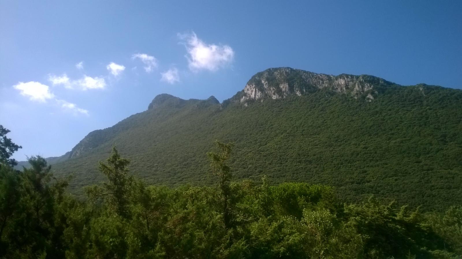 vista da torre paola