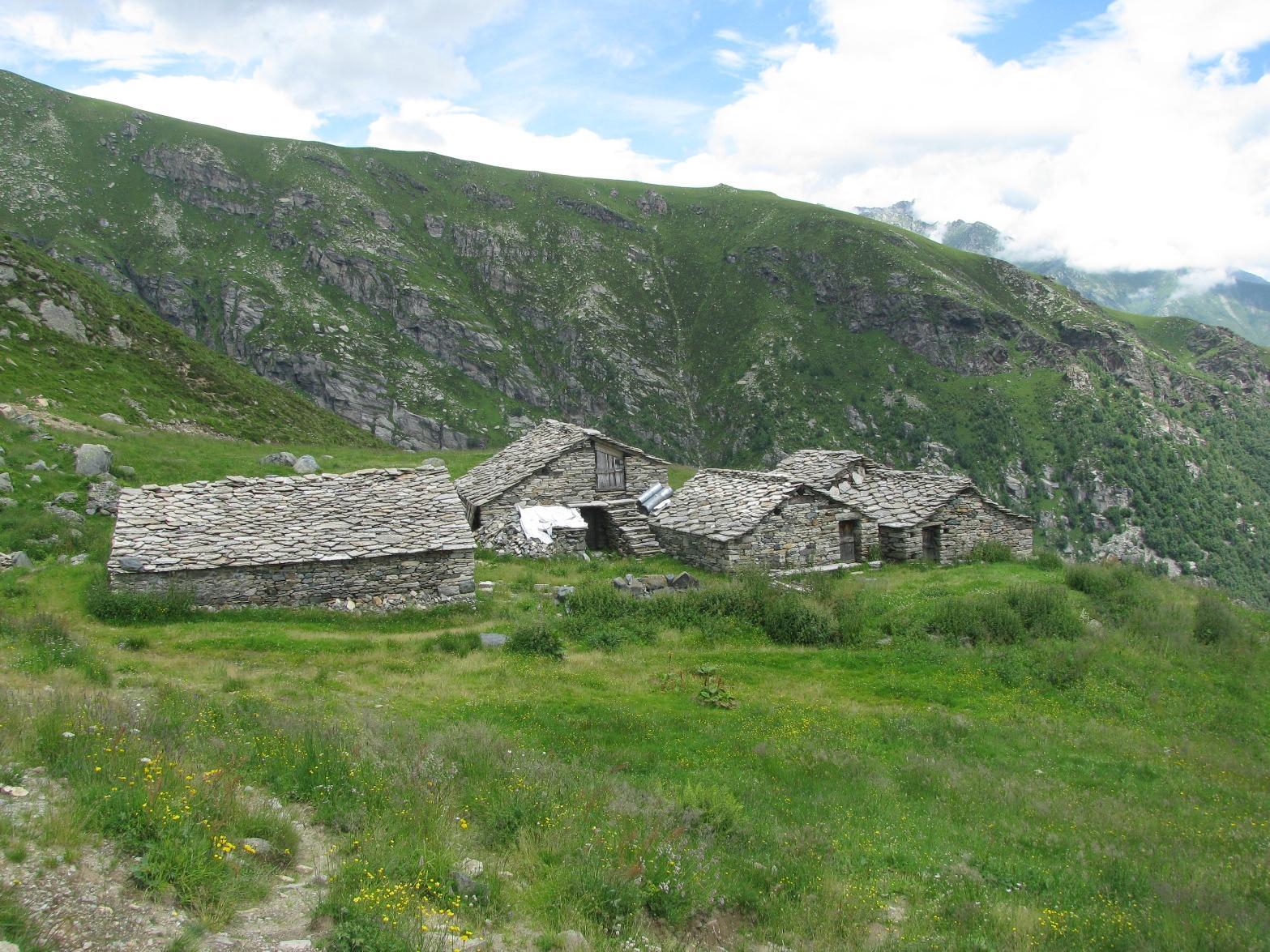 Alpe Bianasso di sopra
