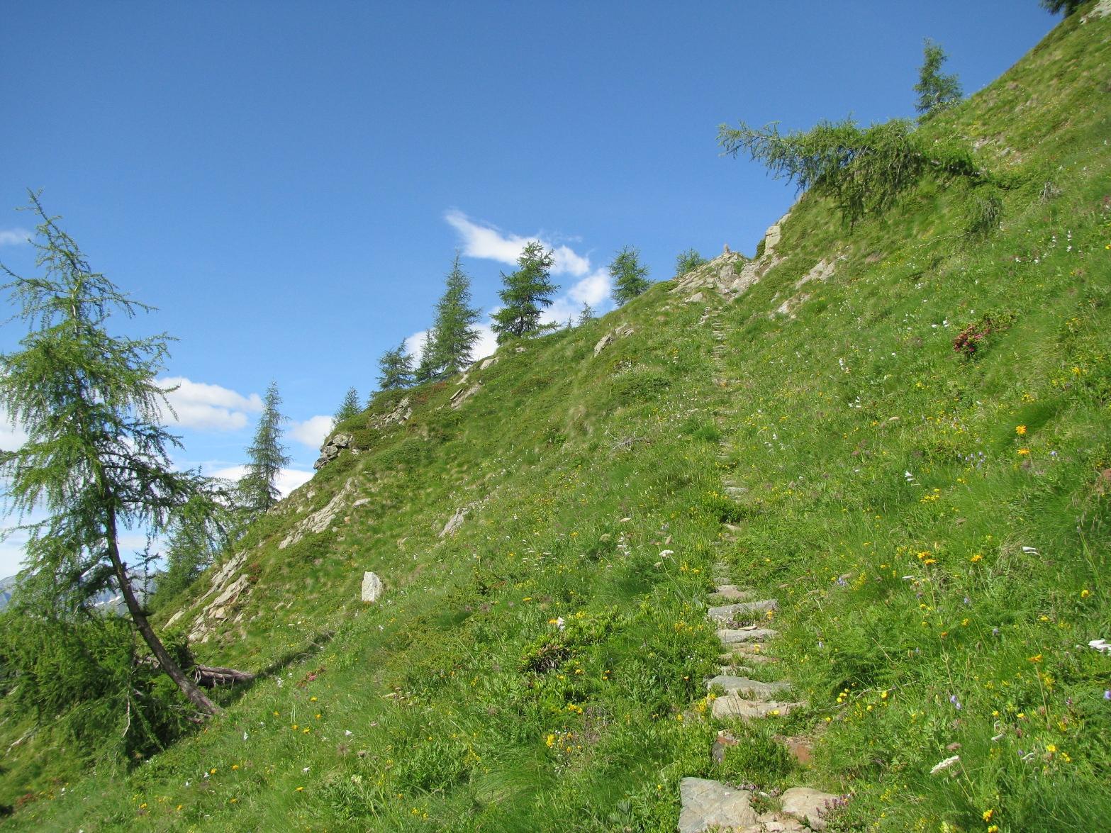 Salendo verso il Lago Santanel
