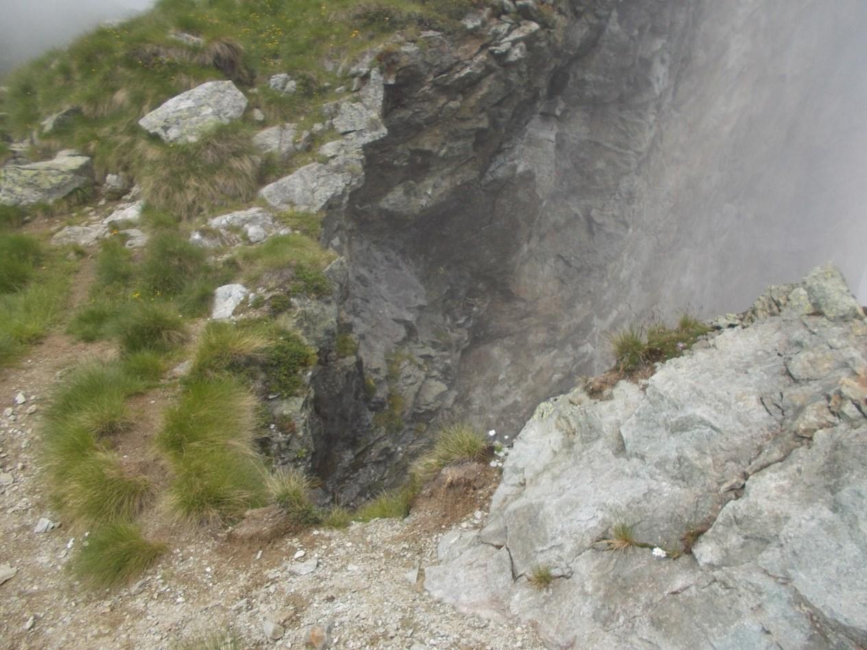 Sajonchè (Cima) e Cima delle Croci Anello Mollia e Valpiana 2014-07-13