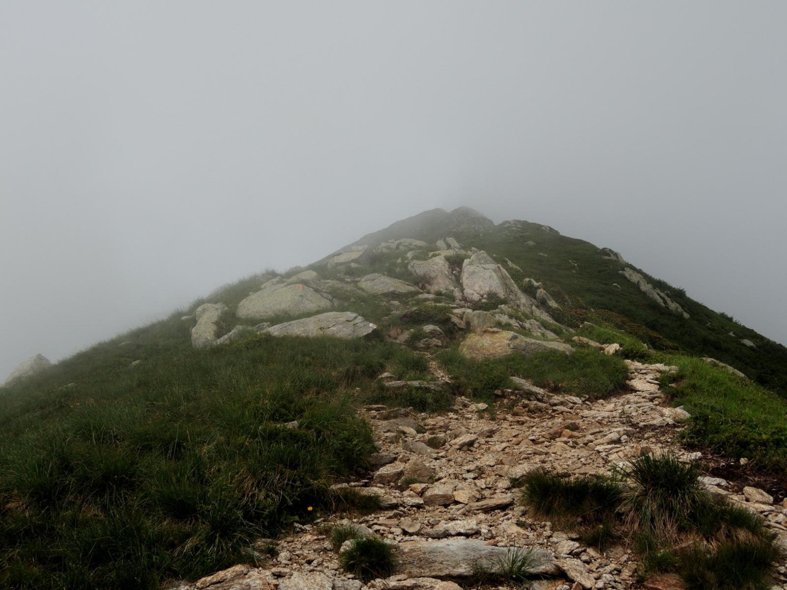 Cresta Est