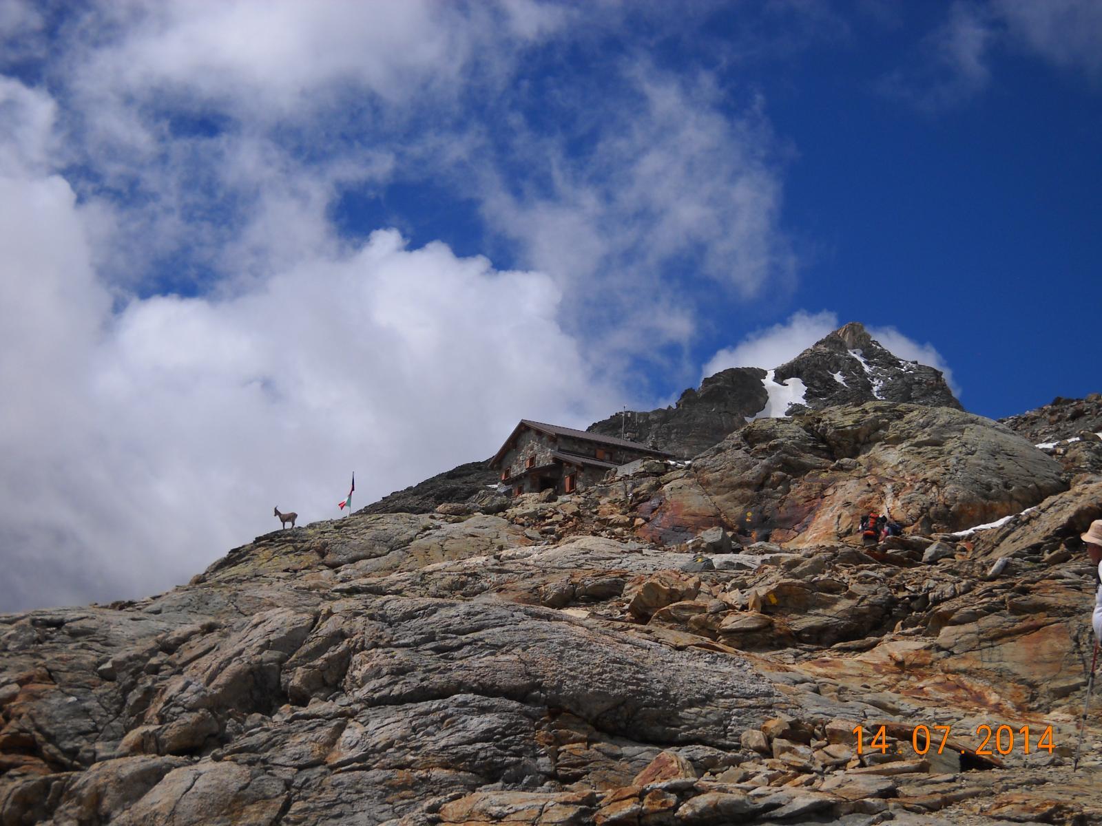 Rif. Perucca Vuillermoz 2909mt.
