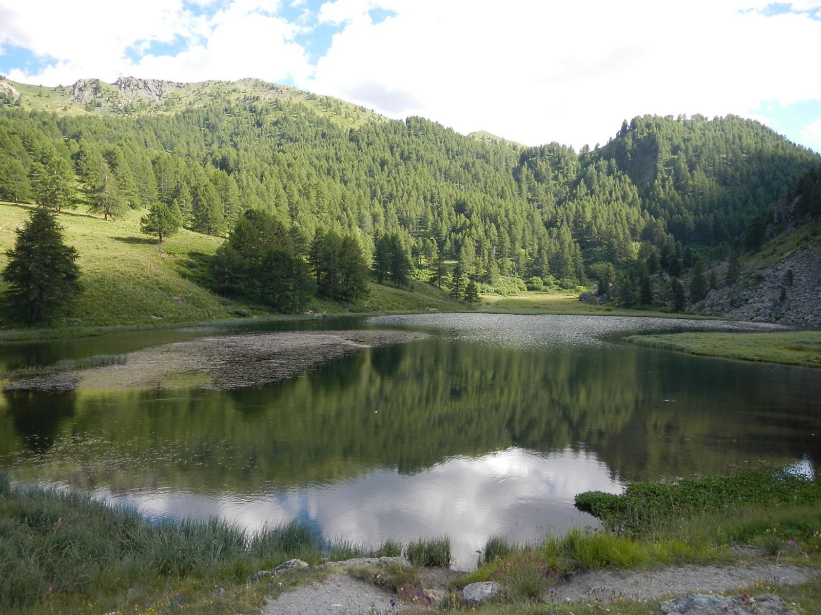 Lago Nero 2014 m.