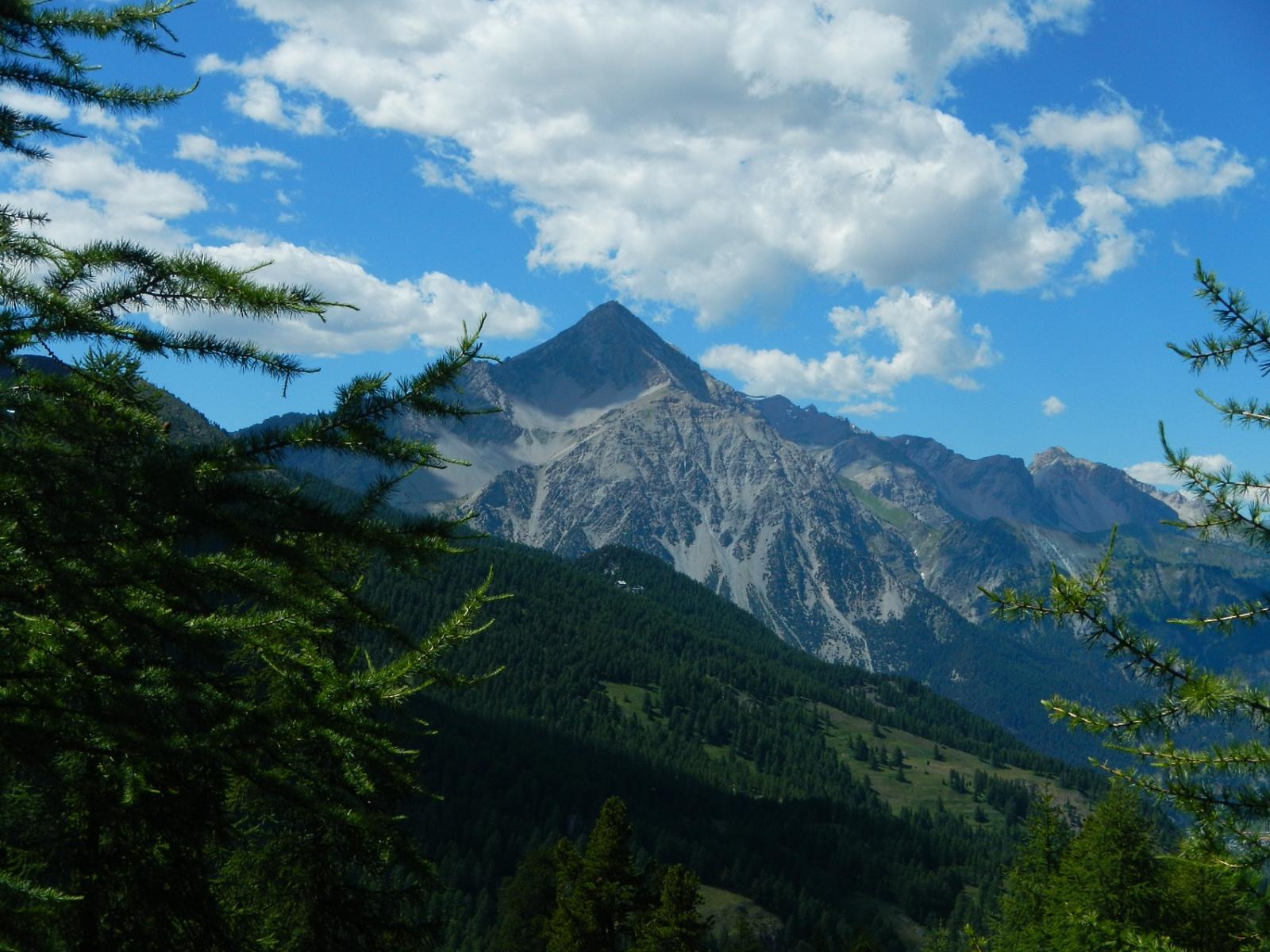 bella vista sul Monte Chaberton