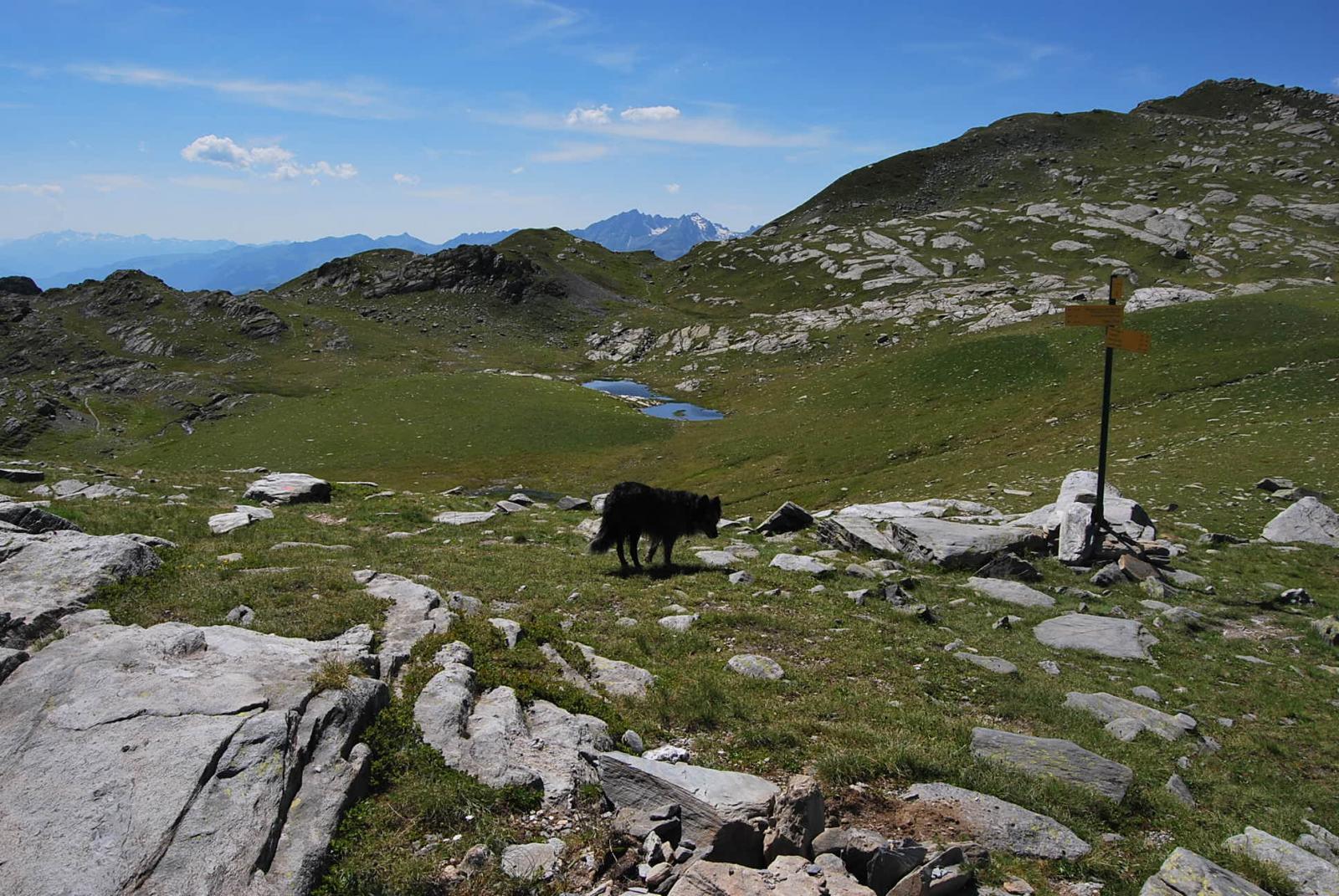 Retour (Lac e Col) daLa Rosiere 2014-07-18