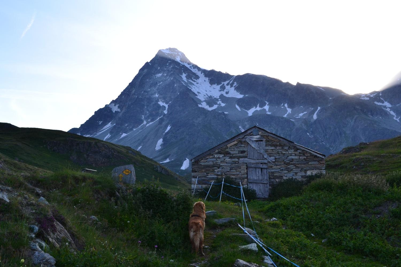 arrivo all'Alpe Lombardin con il Monte Gelé sullo sfondo