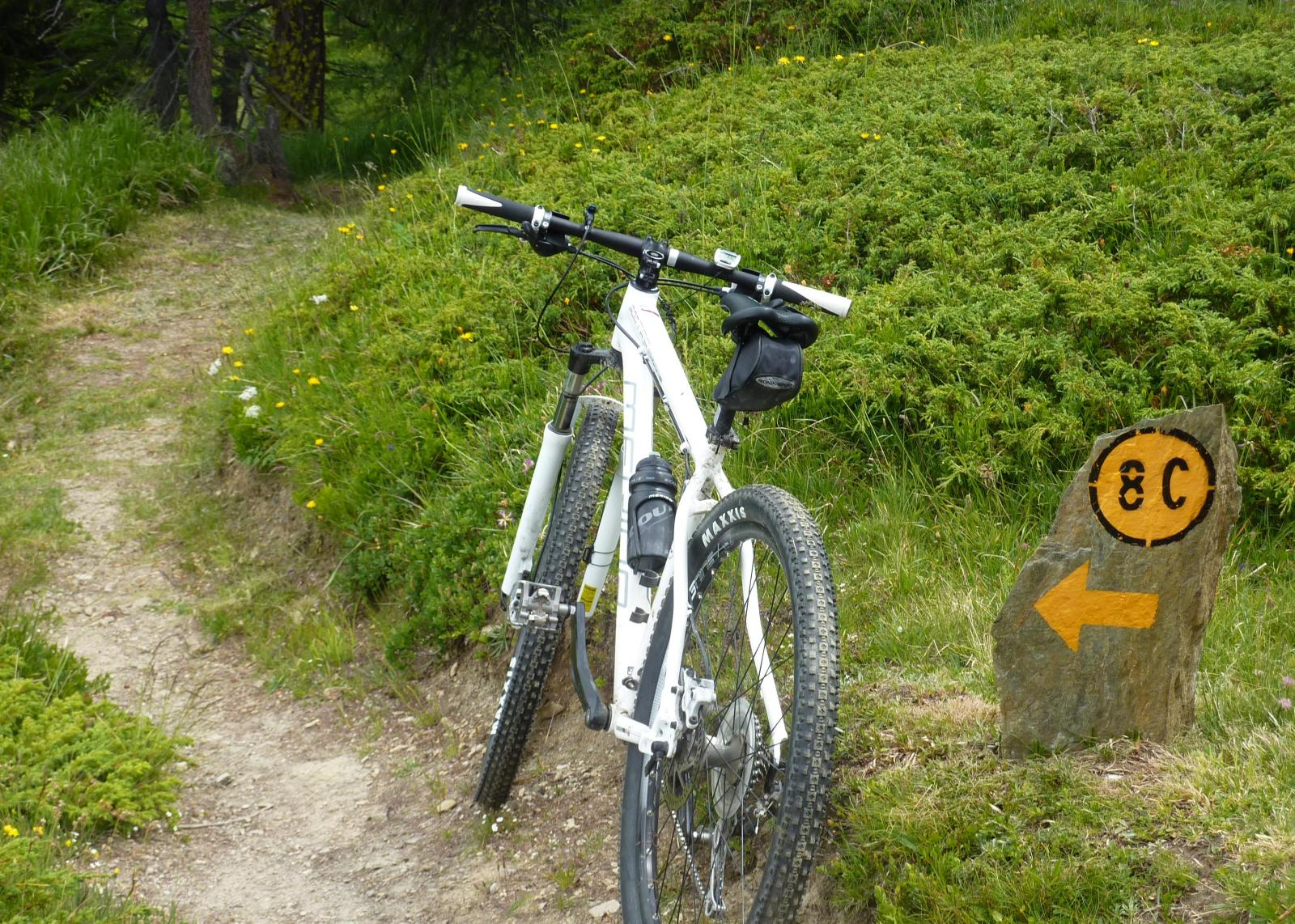 Bois (Téte de) da Etroubles, giro del Vallone Flassin 2014-07-19